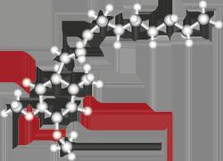 Illustration of a Q10 molecule